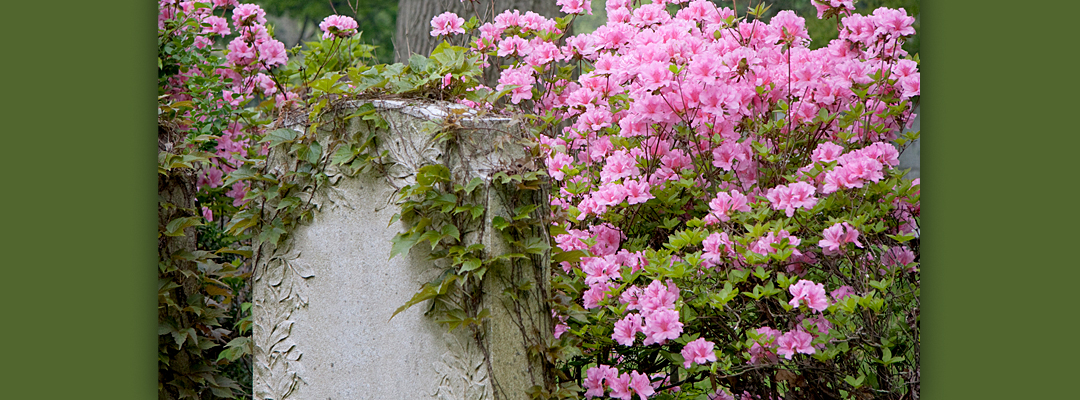Forest Hills Cemetery - Forest Hills Cemetery
