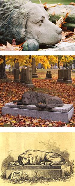 The Barnard Dog